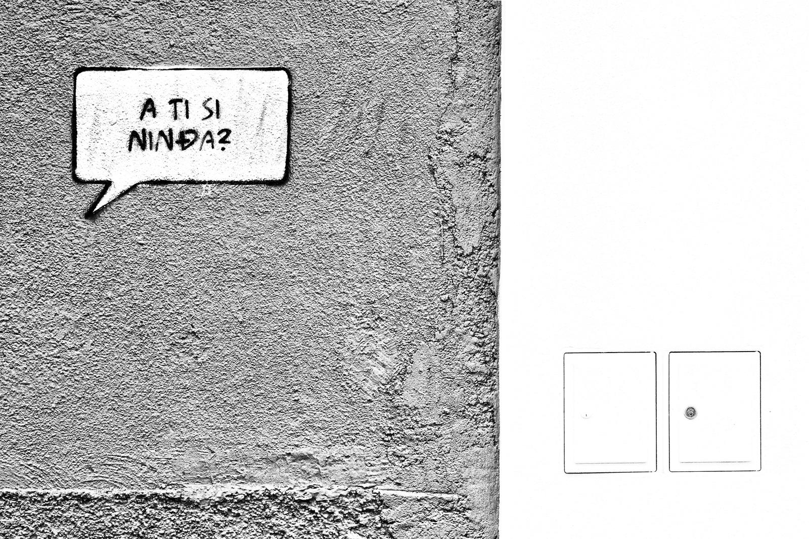 Zid Lara Rojc