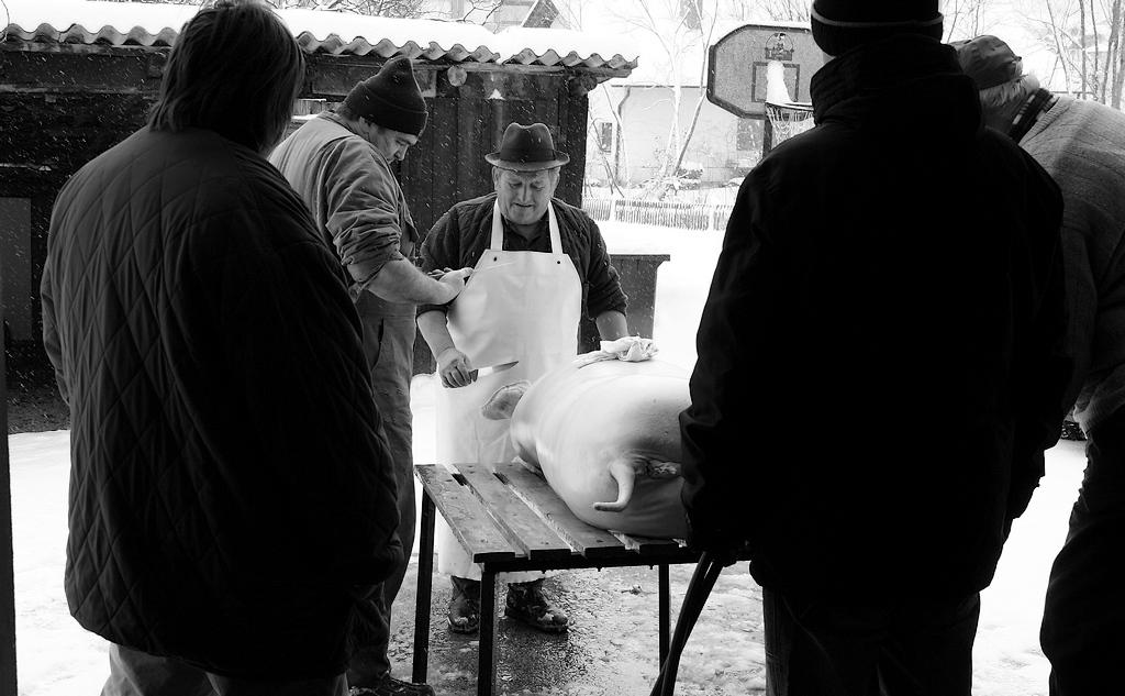 Vanja Tajnšek_Na vasi