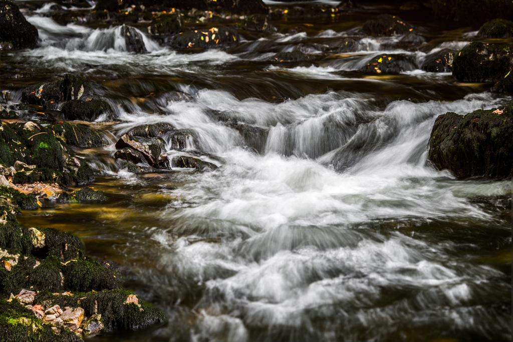Domen Blenkuš_Voda