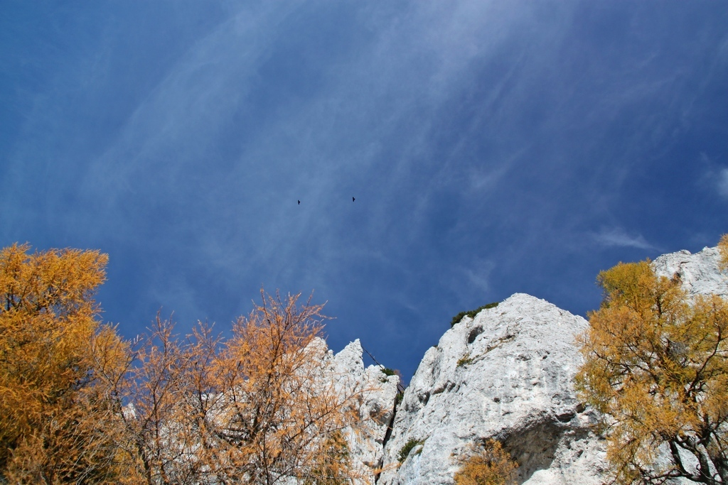 Blanka Podrekar_Proti nebu