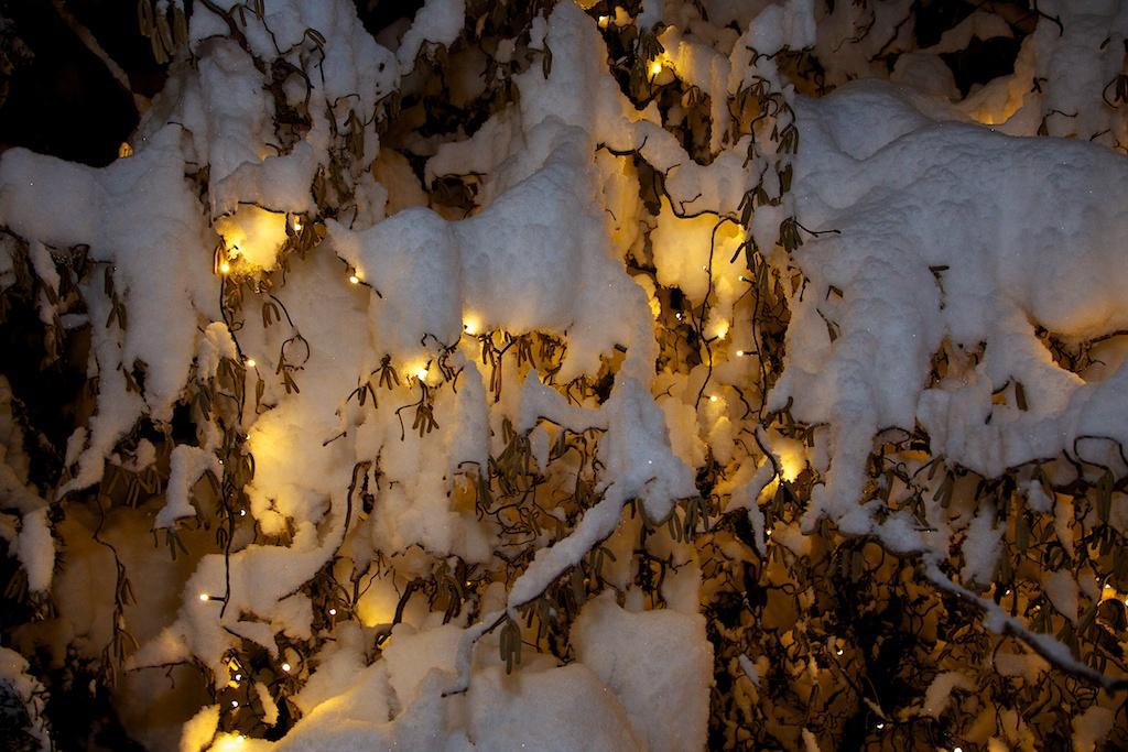 Robert Gajšek_Lučke v snegu