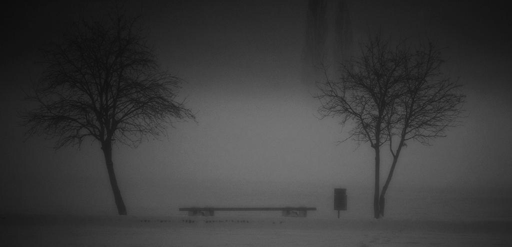 Andrej Potrč_Twins