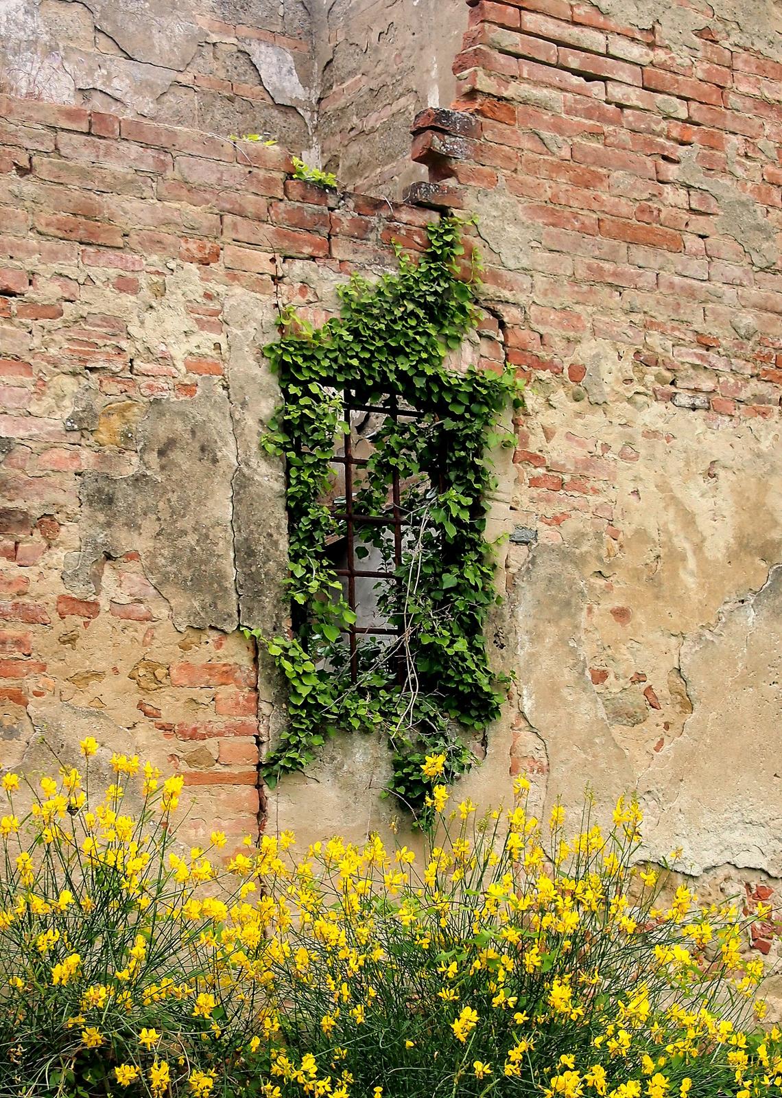 Valentin Steblovnik_Osamelo okno