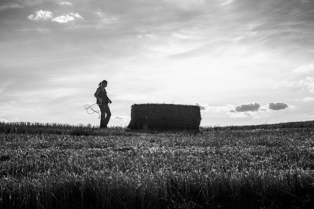 Sanda Z.Fajfaric_Farmer
