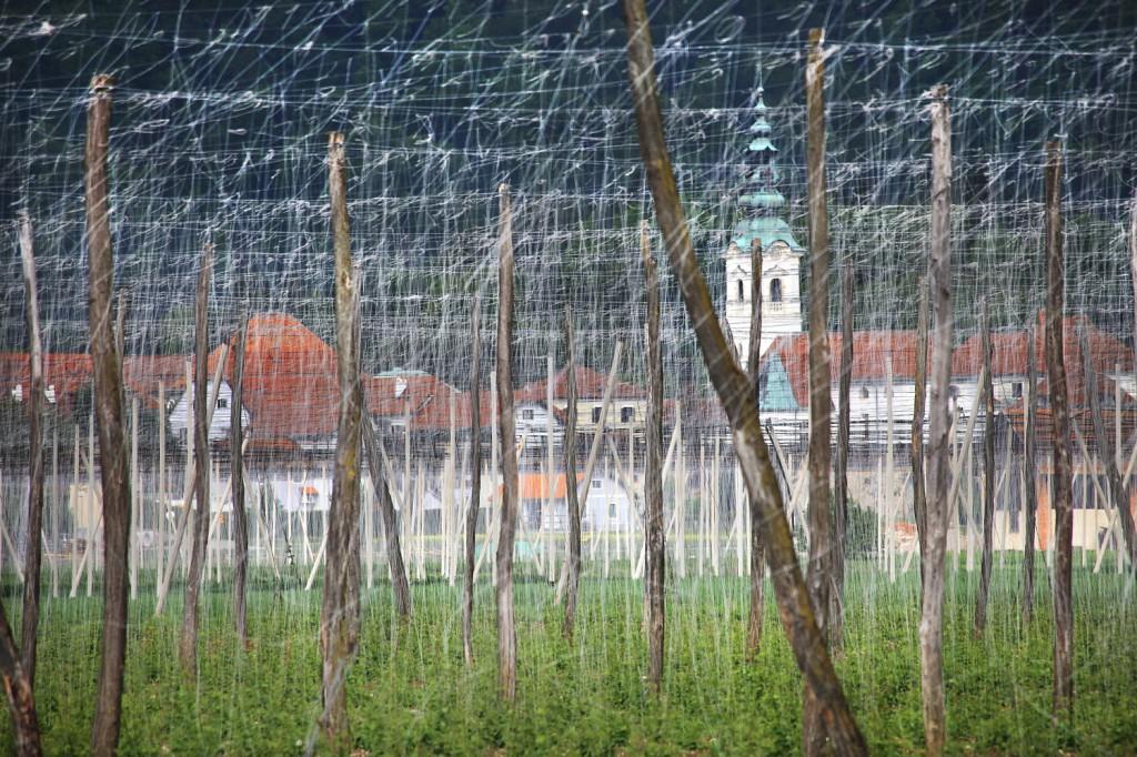 Slovenija – 25. let samostojnosti