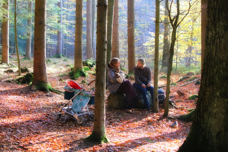 Andreja Ravnak: Bavarski gozd