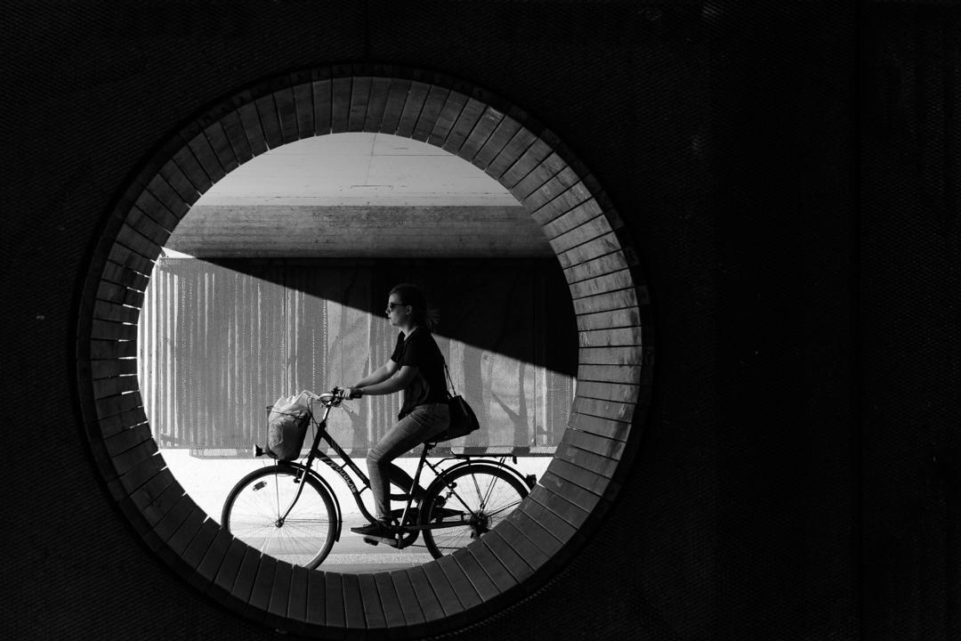 Vid Sajko: Sence v krogu
