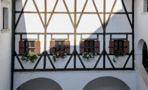 mija-koprivc-okna