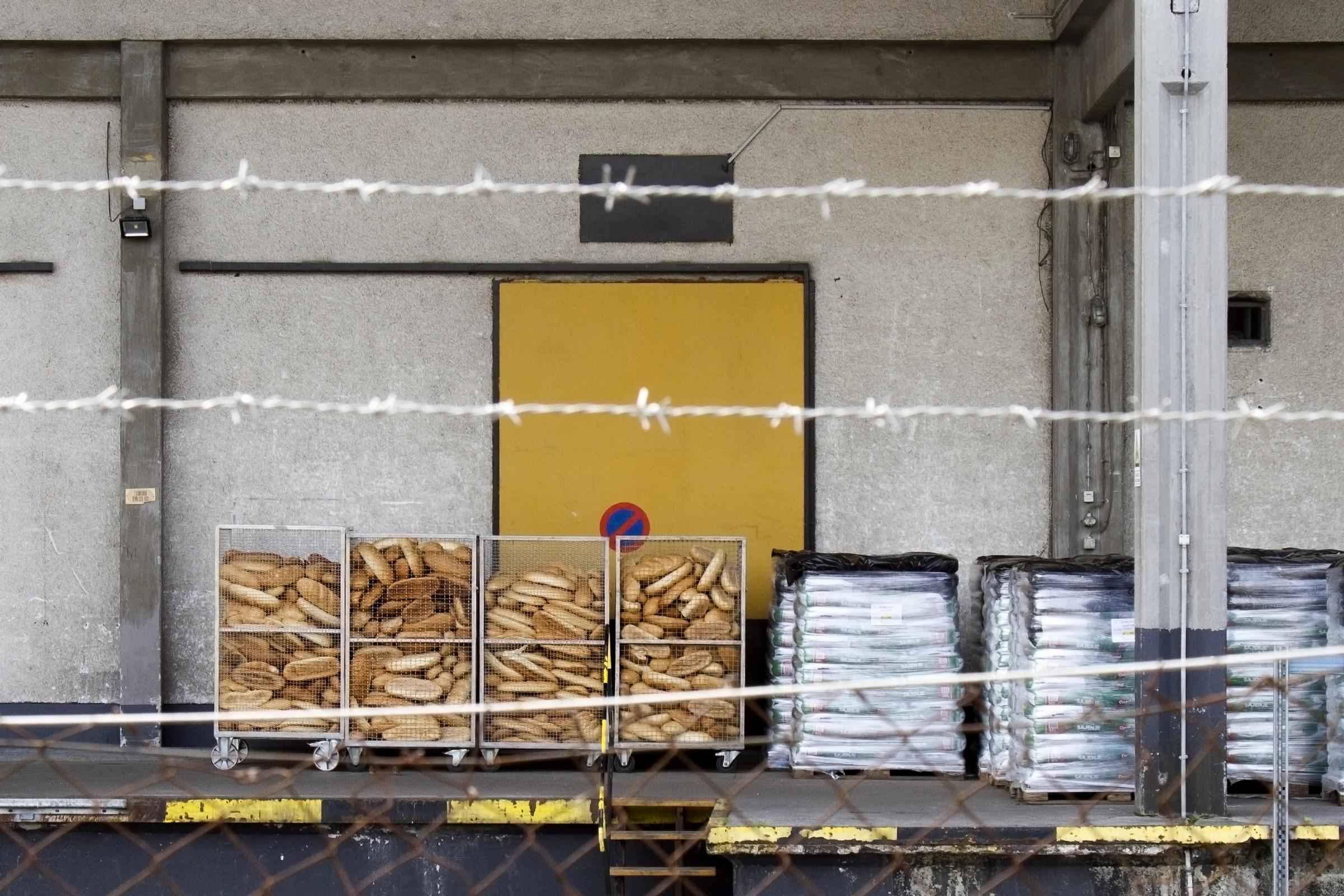 Vanja Tajnšek: Kruha in kruha