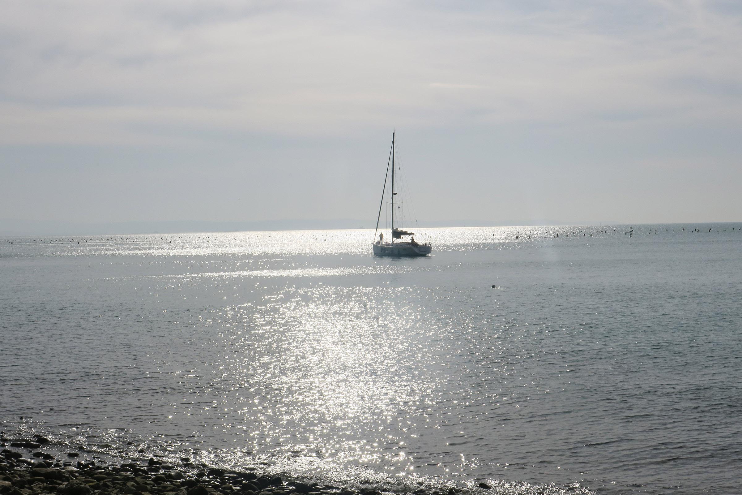 Marlenka Drevenšek: Tržaška obala