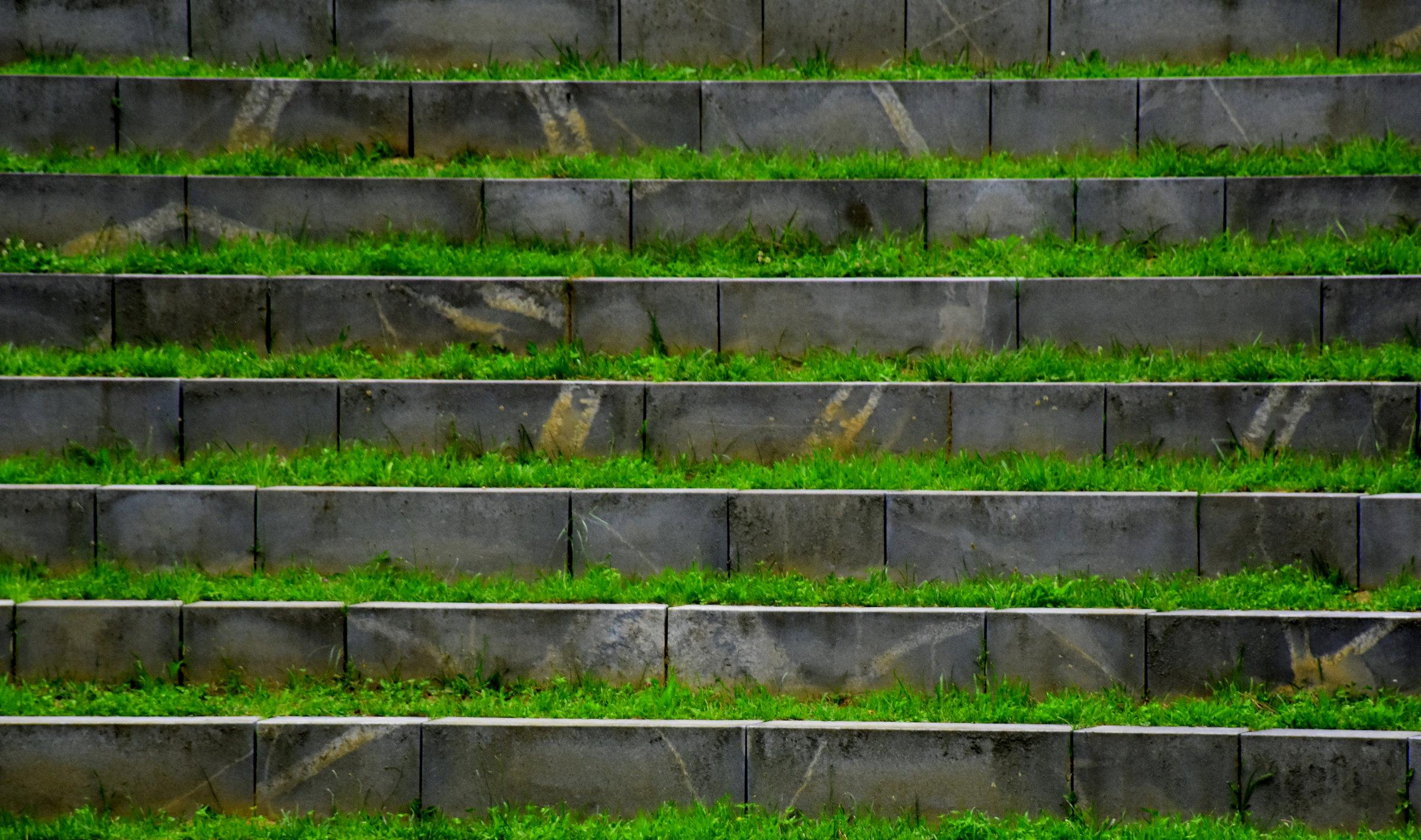 Cvetka Avguštin: Stopnice v nebo