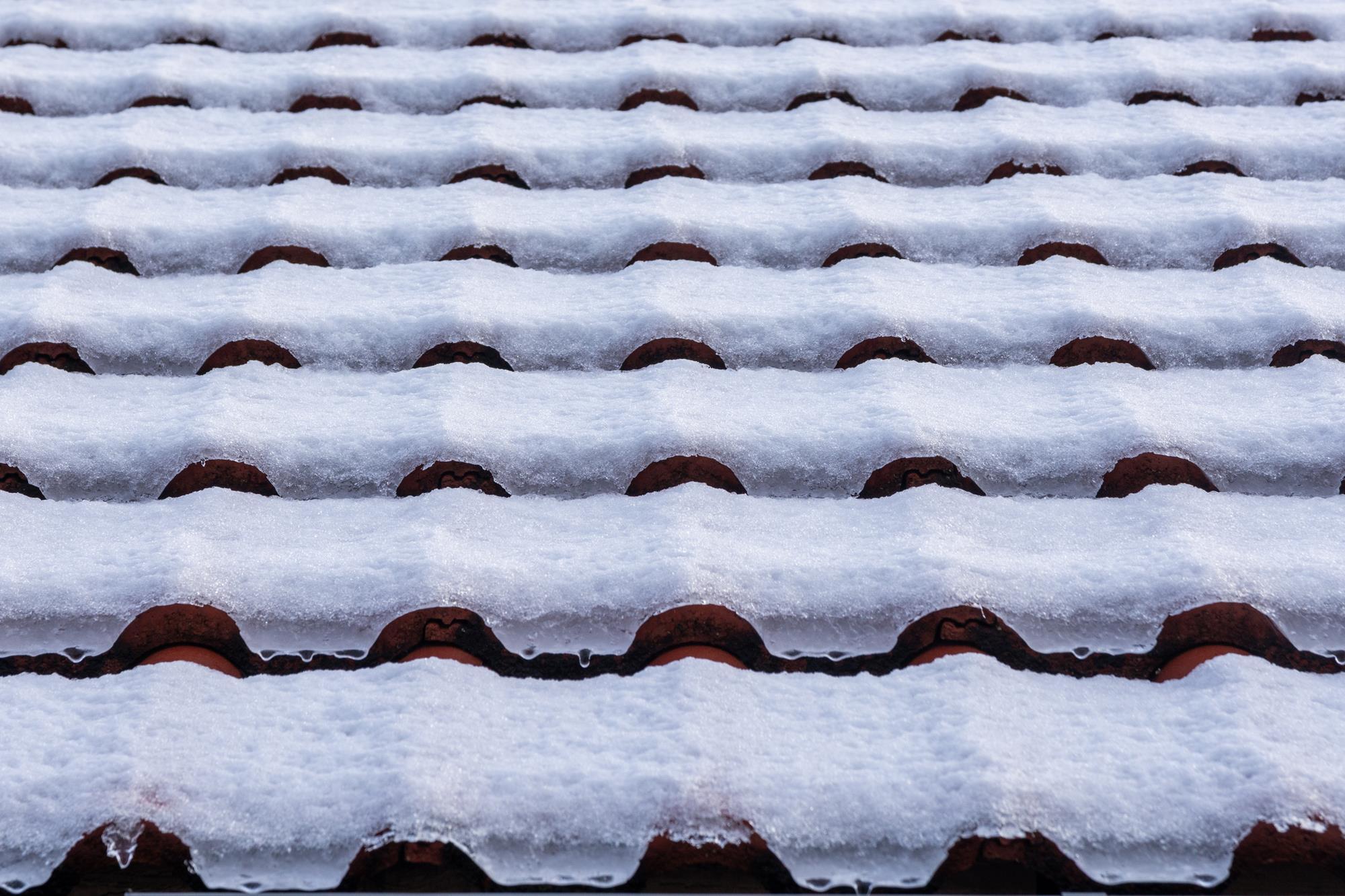 Emil Movh: Snežne črte