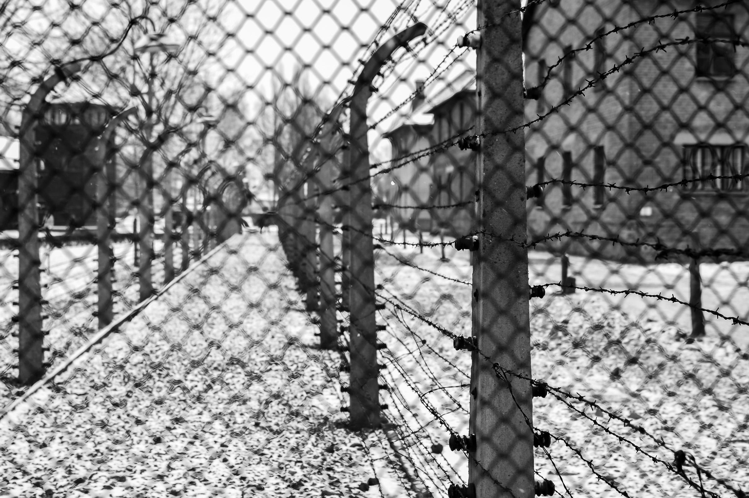 Igor Kastelic: Auschwitz