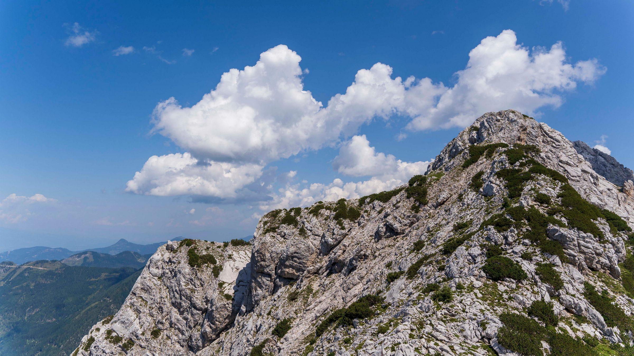 Petar Ribarić - Savinjske alpe